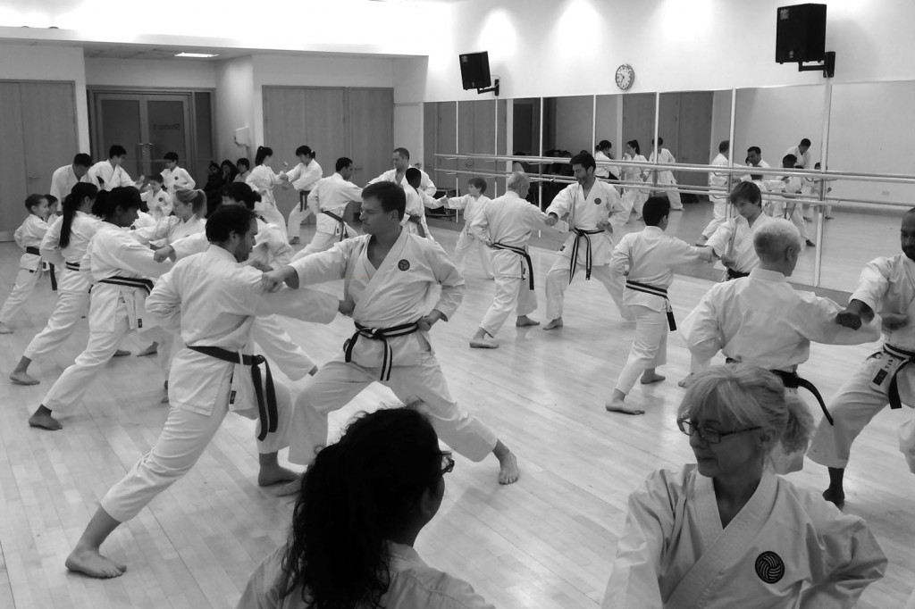 Kumite training or partner exercise