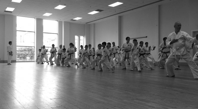 Club Training & Grading, June 2016