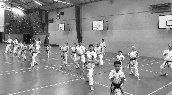 Special Club Training Session & Grading, December 2016