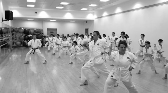 Club Training & Grading, March 2017