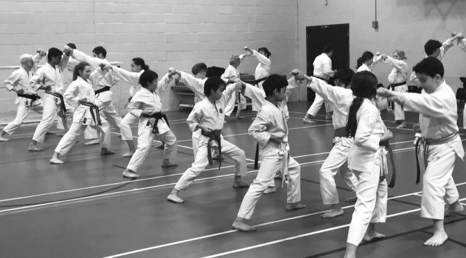 Club Training & Grading, March 2018
