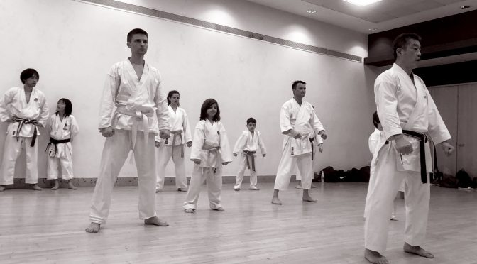 Special Training & Grading with Ohta Sensei, June 2019