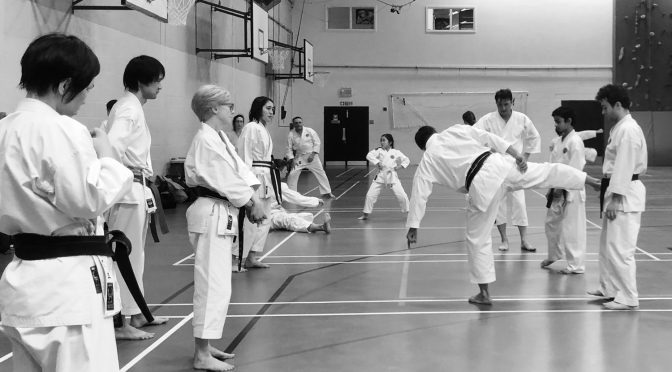 Special Training & Grading with Ohta Sensei December 2019